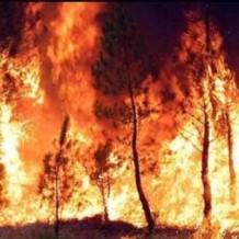 Xarrada informativa prevencio d'incendis a Bixquert